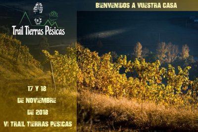Trail Tierras Pésicas Relevos (16km + 15km)