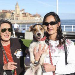 Fotos Paseo Canino San Silvestre Gijón